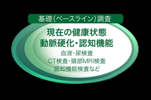 基礎(ベースライン)調査 現在の健康状態 動脈硬化・認知機能 血液・尿検査 CT検査・頭部MRI検査 認知機能検査など